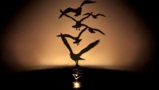 幻想的なオイルランプ「Lumen Oil Lamp Projector」