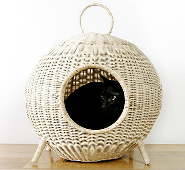 猫が入っているキャットハウスの正面画像