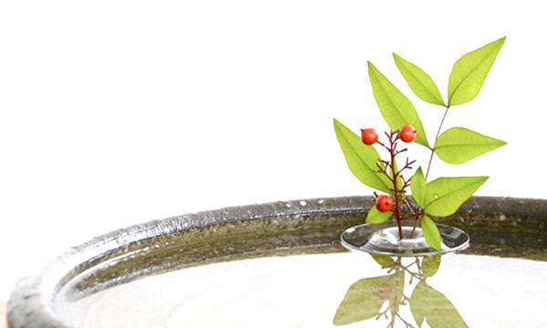和風の器にリップルを浮かべた画像