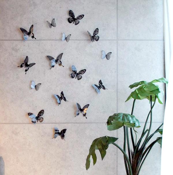 壁に蝶の壁飾りを貼り付けた雰囲気画像