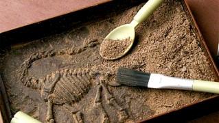 JURASSIC CHOCOLAT(ジュラシックショコラ)