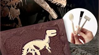 化石が発掘できるチョコレート