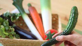 野菜型ボールペン「REAL VEGGIE PEN」