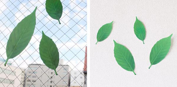 窓と壁に葉っぱを貼り付けた画像