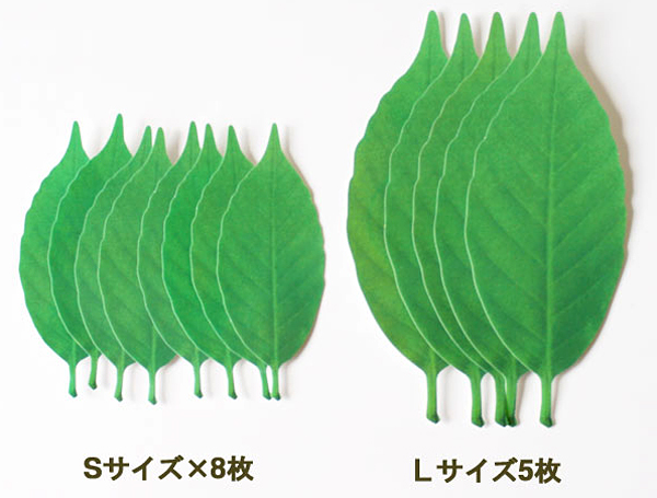 2種類のサイズの葉っぱを並べた画像