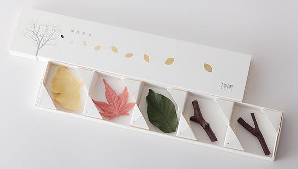 カラー付きの葉枝おきの画像