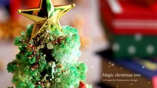マジッククリスマスツリーの画像