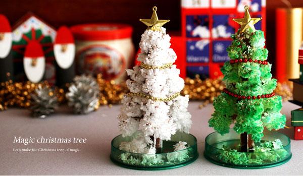 2種類のマジッククリスマスツリーを並べて飾っている画像