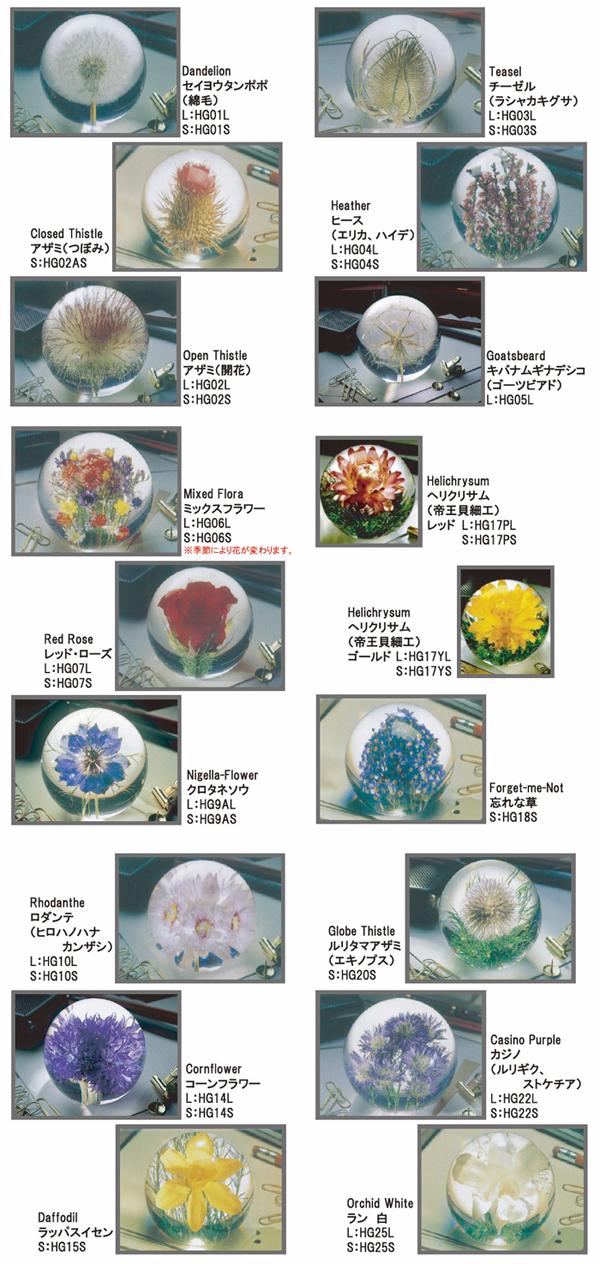 いろいろな花のペーパーウェイトを並べた画像